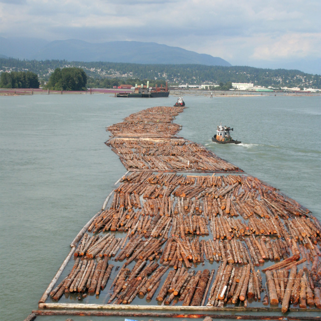 The strong evolution of lumber industry