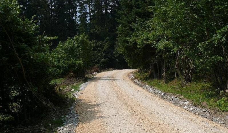 Noi drumuri forestiere in Brasov