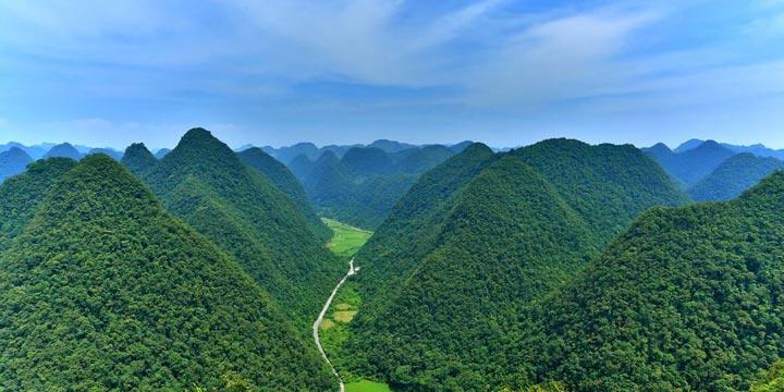 China este cea mai mare tara producatoare si comerciala cu produse silvice
