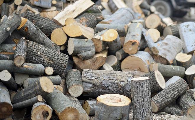 Situatia lemnelor de foc - in continuare sub semnul intrebarii