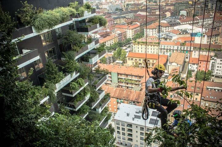 Cel mai poluat oras din Europa a construit in 6 ani prima padure verticala din lume