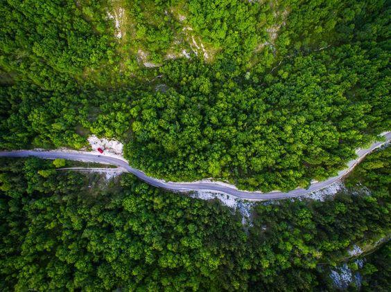 Drone pentru monitorizarea padurilor, realizate la Cluj