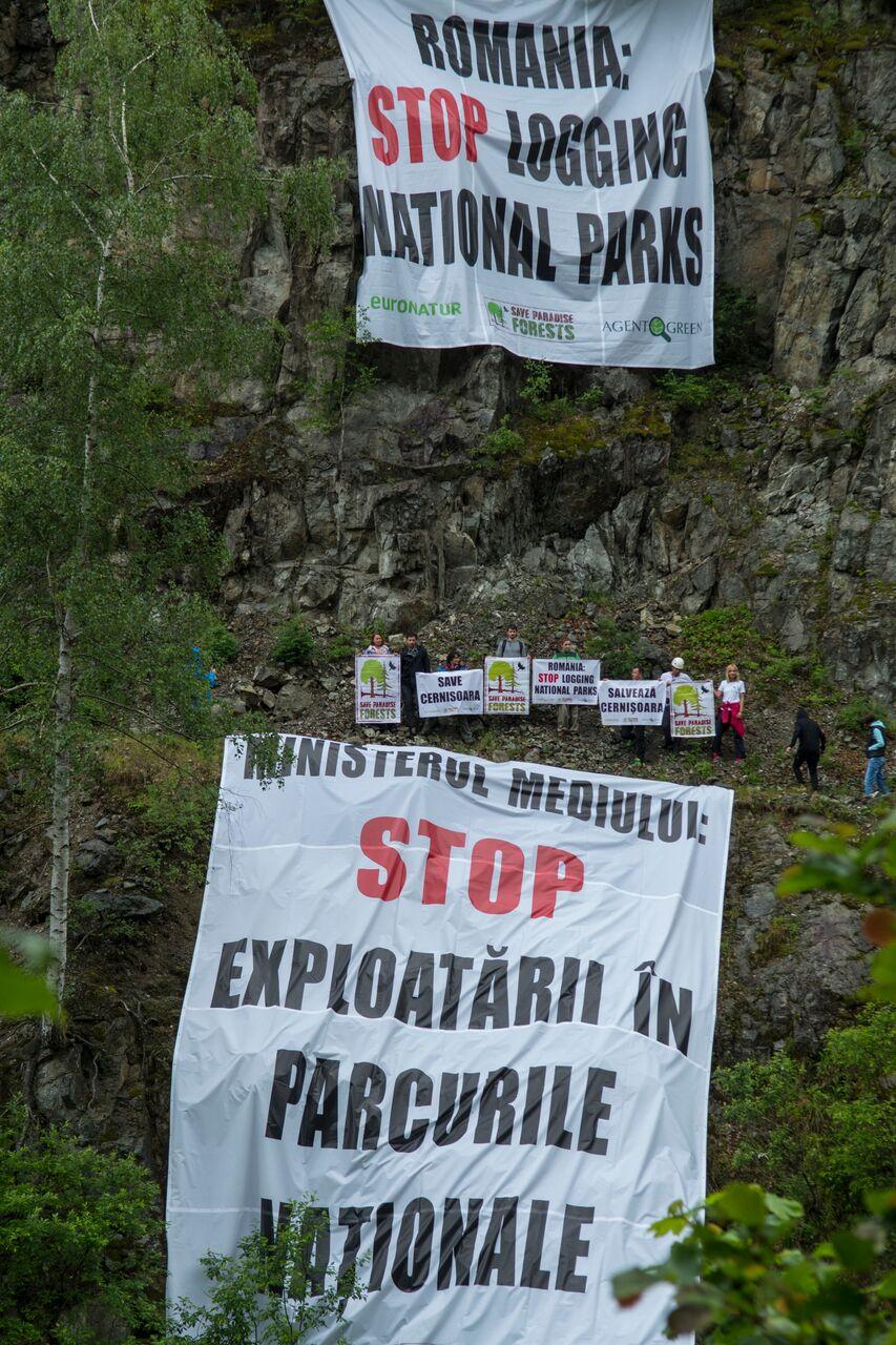 25 de activisti au spus stop exploatarilor in parcurile nationale
