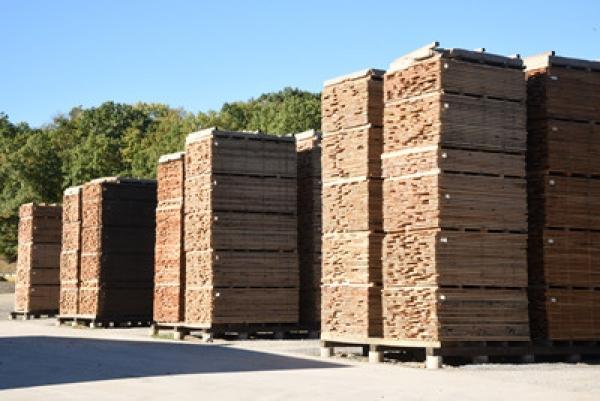Asia, SUA si Europa - tendinte in ceea ce priveste industria lemnului