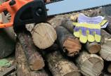 Pretul lemnului se tot dubleaza, de la un an la altul...