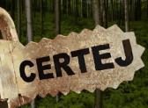 Protest fata de proiectul de aprobare a defrisarii a peste 56 de hectare de padure in comuna Certeju de Sus