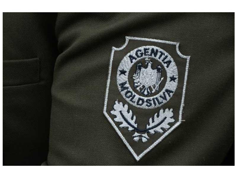 Silvicultorii din Republica Moldova isi sarbatoresc Ziua profesionala
