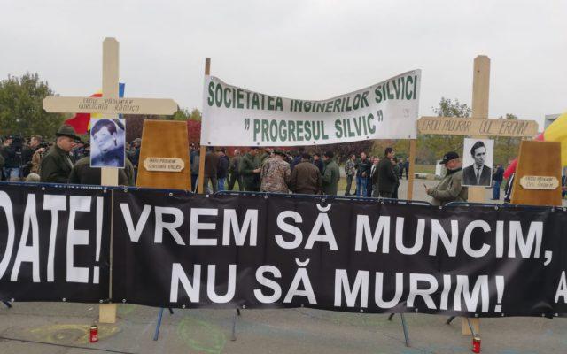 "Protestul silvicultorilor: ""Vrem sa muncim in siguranta"""