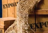 Kelemen Hunor propune stoparea exportului de masa lemnoasa bruta pentru urmatorii 10 ani
