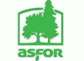 Romsilva a prezentat oferta de masa lemnoasa pentru productia 2020